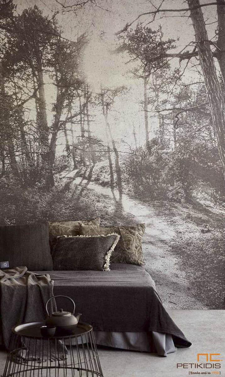 Urban Jungle: Δημιουργήστε μια Μικρή Ζούγκλα στο Σπίτι σας